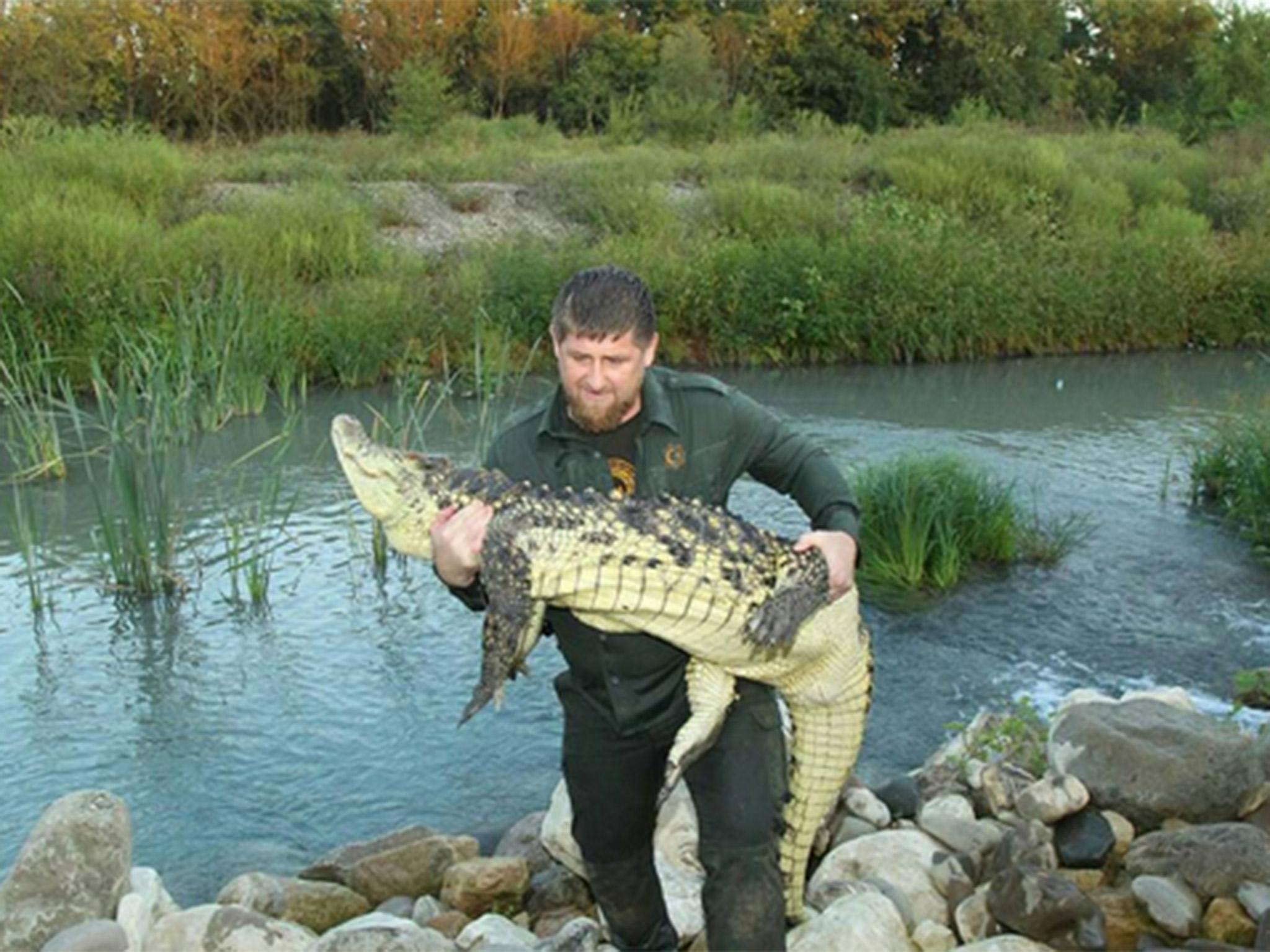 Ramzan Kadyrov con un coccodrillo